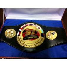 Muay Thai Fights and Tournaments Custom Champion Belts ALl Belts Can Be Customize As Per Designs Logos and Pictures